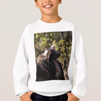 Male gelada baboon (Theropithecus gelada) Sweatshirt