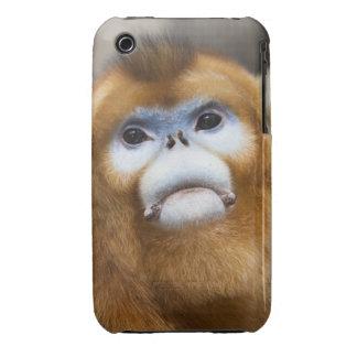 Male Golden Monkey Pygathrix roxellana Case-Mate iPhone 3 Cases