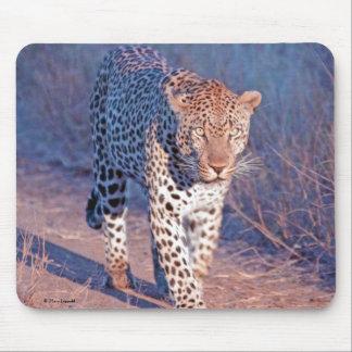 Male Leopard Mouse Pad