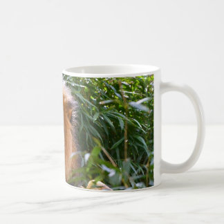 Male Lion, King of Beasts coffee mug