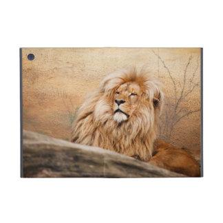 Male Lion Photo iPad Mini Case