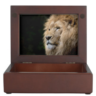 Male lion portrait on black background keepsake box