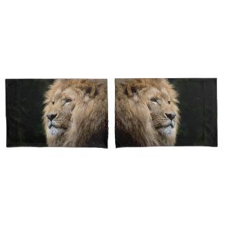 Male lion portrait on black background pillowcase