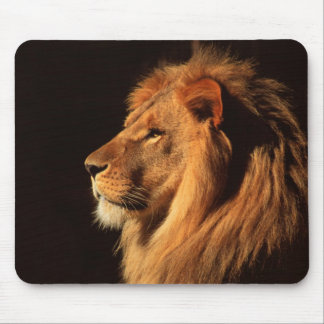 Male Lion Profile - Wildlife Images by Steven Holt Mouse Pad