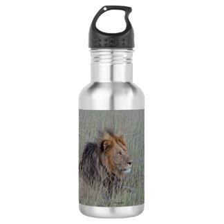 MALE LION WATER BOTTLE