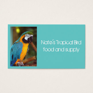 Male Macaw Business Card