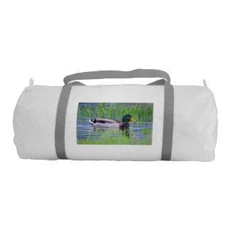 Male mallard duck floating on the water gym bag
