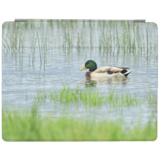 Male mallard duck floating on the water iPad cover