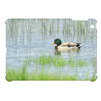 Male mallard duck floating on the water iPad mini cover