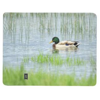 Male mallard duck floating on the water journal