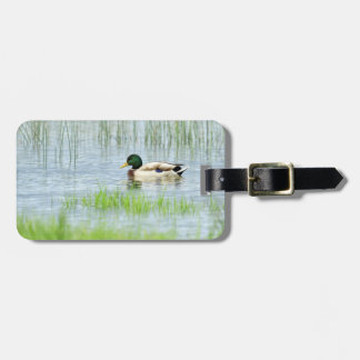 Male mallard duck floating on the water luggage tag