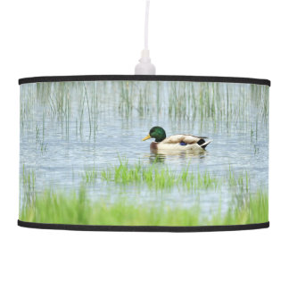 Male mallard duck floating on the water pendant lamp