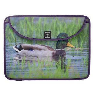 Male mallard duck floating on the water sleeve for MacBook pro