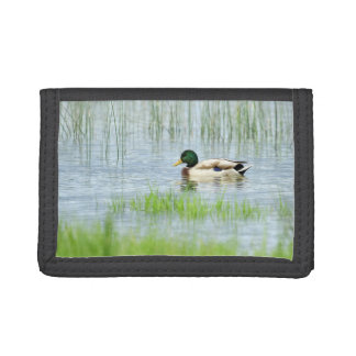 Male mallard duck floating on the water trifold wallets