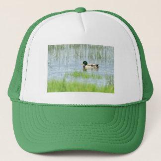 Male mallard duck floating on the water trucker hat