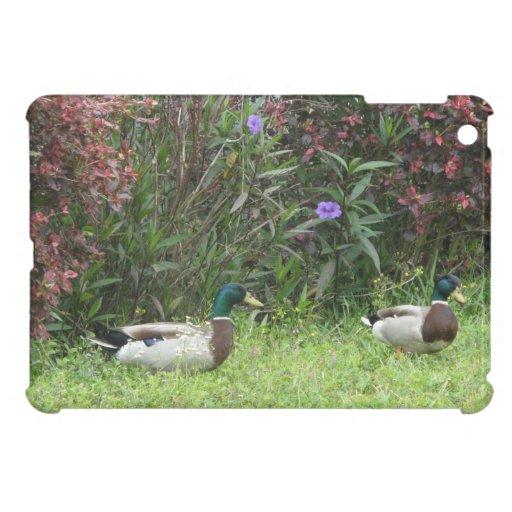 Male Mallard Ducks iPad Mini Cases