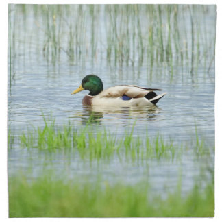 Male mallard or wild duck, anas platyrhynchos napkin