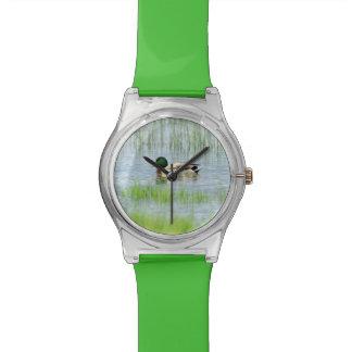 Male mallard or wild duck, anas platyrhynchos wristwatches
