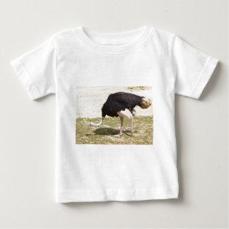 Male Ostrich walking Baby T-Shirt