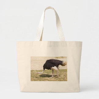 Male Ostrich walking Large Tote Bag