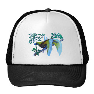 Male Paradise Bird Trucker Hat