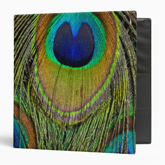 Male peacock tail feathers 3 ring binders