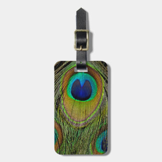 Male peacock tail feathers luggage tag