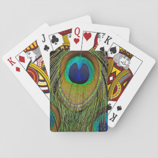 Male peacock tail feathers playing cards