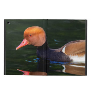 Male red-crested pochard, netta rufina, duck cover for iPad air