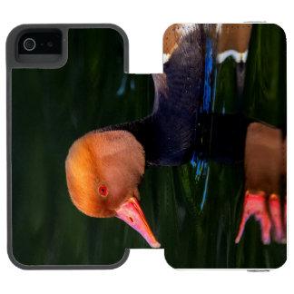 Male red-crested pochard, netta rufina, duck incipio watson™ iPhone 5 wallet case