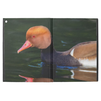 "Male red-crested pochard, netta rufina, duck iPad pro 12.9"" case"