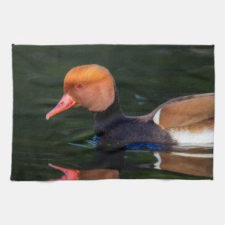 Male red-crested pochard, netta rufina, duck kitchen towel