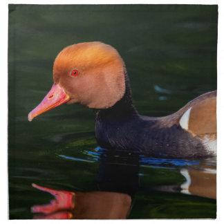Male red-crested pochard, netta rufina, duck napkin