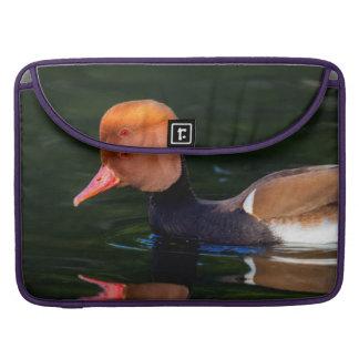 Male red-crested pochard, netta rufina, duck sleeve for MacBooks