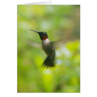 Male Ruby Throat Hummingbird Card