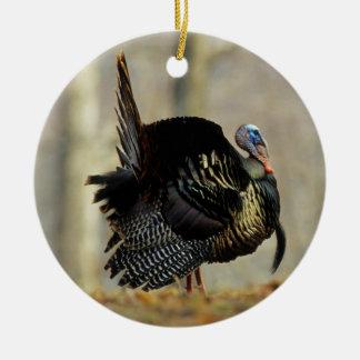 Male turkey strutting, Illinois Ceramic Ornament