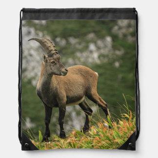 Male wild alpine, capra ibex, or steinbock drawstring bag