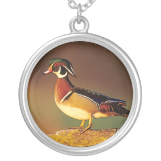 Male wood duck, Illinois Silver Plated Necklace