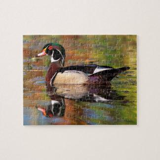 Male wood duck swims, California Jigsaw Puzzle