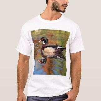 Male wood duck swims, California T-Shirt