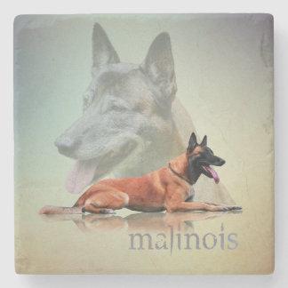 Malinois - Belgian shepherd -Mechelaar -Maligator Stone Coaster
