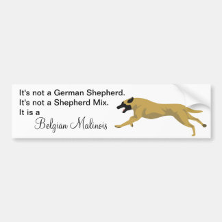 Malinois NOT German Shepherd Bumper Sticker