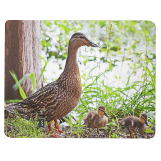 Mallard and Ducklings by Shirley Taylor Journals
