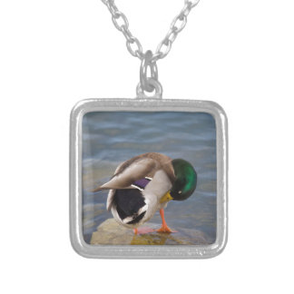 Mallard colors silver plated necklace