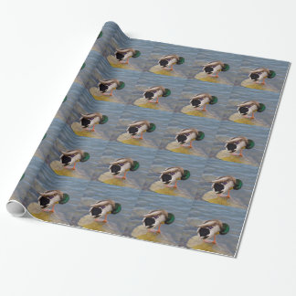 Mallard colors wrapping paper
