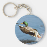 Mallard Drake Duck Basic Round Button Keychain