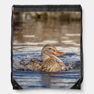 Mallard Duck at Downing Park Drawstring Bag
