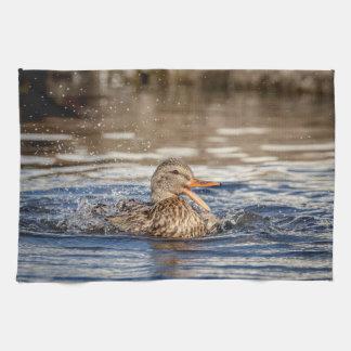 Mallard Duck at Downing Park Kitchen Towel