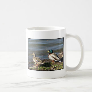 Mallard duck couple mug