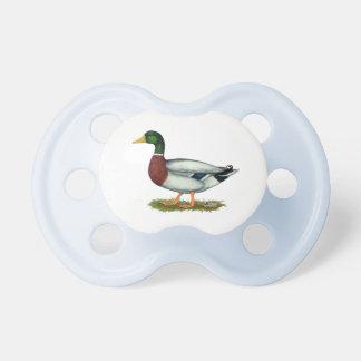 Mallard Duck Drake Pacifier